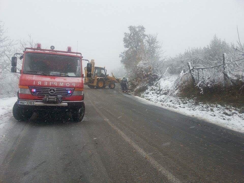 Circulație oprită în Harghita, din cauza copacilor cazuti pe carosabil! Un brad a căzut peste un microbuz!