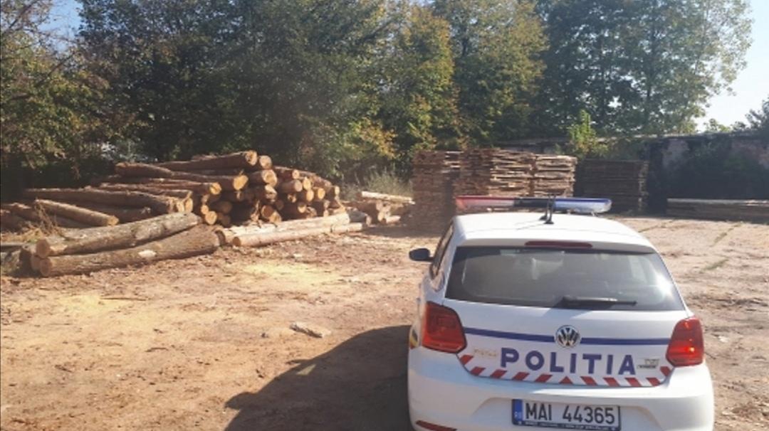 Peste 120 de metri cubi de material lemnos confiscaţi de poliţiştii băcăuani